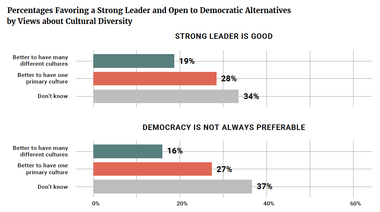 Percentages Favoring a Strong Leader and Open to Democratic Alternatives by Views about Cultural Diversity